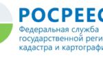 О работе Call-центра Управления Росреестра по Волгоградской области